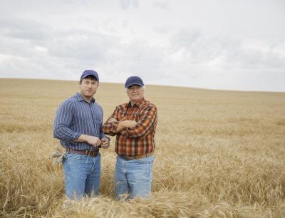 Landwirte auf Feld