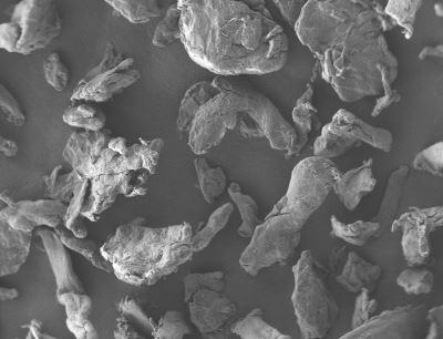 Rasterelektronenmikroskopische Aufnahme von Cellulosepartikeln