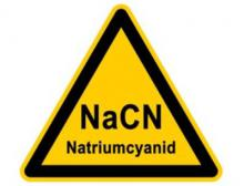 Einweihung der Produktionsanlage für Natriumcyanid in Coatzacoalcos, Veracruz, Mexiko