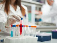 BASF stellt Forschungsgruppen Substanzen aus ihrer mehrere Millionen Verbindungen umfassenden Substanzbibliothek zur freien Verfügung
